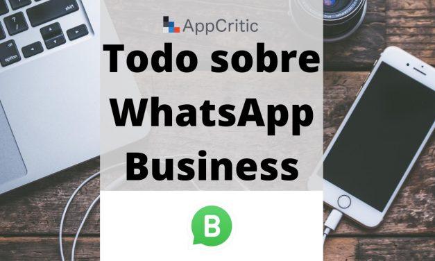 Cuánto cuesta WhatsApp Business, para qué sirve y cómo empezar a usarlo